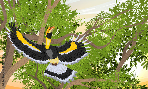 Fototapeta premium Great hornbill Buceros bicornis takes off from a tree branch. Tropical bird great Indian hornbill at sunset. Realistic vector landscape