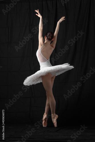 Canvastavla Young beautiful skinny ballerina is posing in studio