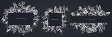 Floral Frames With Chalk Laelia, Feijoa Flowers, Glory Bush, Papilio Torquatus, Cinchona, Cattleya Aclandiae