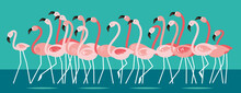 Pink Beautiful Flamingo, Flock Of Birds Cartoon Vector Illustration, Horizontal Banner.