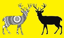 Deer Mandala Coloring Book . Coloring Page For Animal