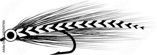 Obraz na plátně fly baitfish sketch - fishing lure