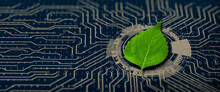 Green Leaf On The Converging Point Of Computer Circuit Board. Nature With Digital Convergence And Technological Convergence. Green Computing, Green Technology, Green IT, Csr, And IT Ethics Concept.