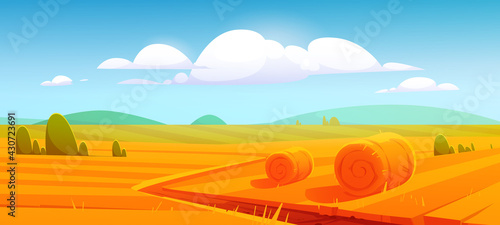 Obraz na plátne Rural landscape with hay bales on agriculture farm field