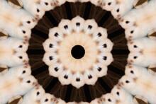 Kaleidoscope In Blackish Brown And Cremeish White