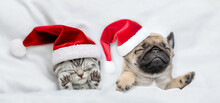 Cute Kitten And Pug Puppy Wearing Santa Hats Sleep Together  Under A White Blanket On A Bed At Home. Top Down View