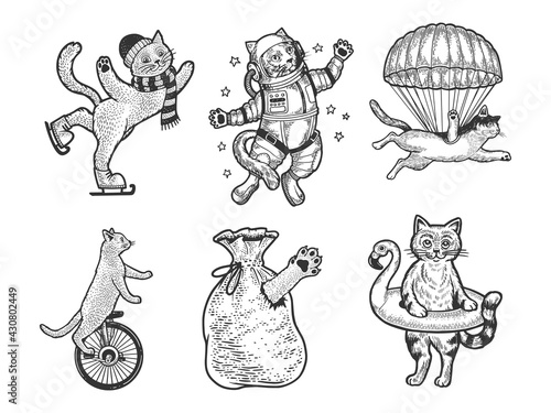 Cat set sketch engraving vector illustration. T-shirt apparel print design. Scratch board imitation. Black and white hand drawn image. - fototapety na wymiar