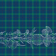 Ornament With Flowers Of Thistle. Scottish Thistle Isolated On White, Vector Illustration. Template For Invitation, Poster, Flyer, Banner, Etc.