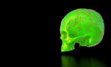 Green Skull With Gold Frame In Plexus Style.