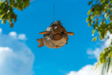 Flying Fish Carved From A Coconut Hangs As A Wind Chime On The Beach Of The Small Island Of Poyalisa On The Togian Islands In Sulawesi, Indonesia