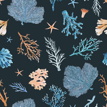 Beautiful Vector Seamless Underwater Pattern With Watercolor Sea Life Colorful Corals. Stock Illustration.