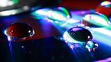 Fototapeta Tęcza - Krople wody na płycie DVD w ujęciu makrofotografii