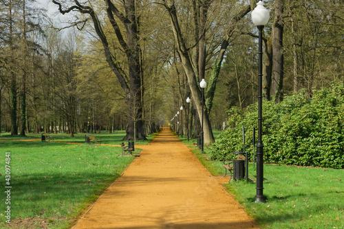 Obraz Parkowe alejki w parku dworskim w Iłowej.  - fototapety do salonu