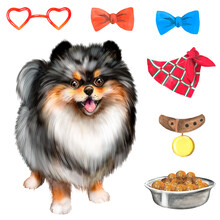 Watercolor Illustration With Spotted Pomeranian, Bows, Dog Food, Dog, Pet
