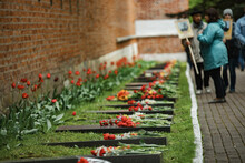 Flowers Lie On Soldiers Graves. The Memory Of The Heroes Who Died In The War. Memorial Cemetery On Victory Day. Lots Of Bouquets And Wreaths From Grieving People