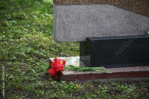 Stampa su Tela flowers lie on soldiers graves