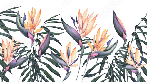 Seamless Border of Watercolor Palm Leaves and Strelitzia Flowers - fototapety na wymiar