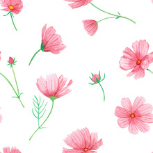 Watercolor Seamless Pattern With Summer Pink Flowers On A White Background, Hand-drawn. For Textile, Greeting Card, Wrapping Paper, Wedding Invitations.