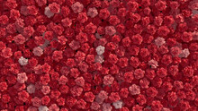 Elegant, Colorful Wall Background With Carnations. Pink, Floral Wallpaper With Romantic, Bright Flowers. 3D Render