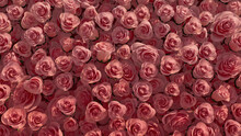 Elegant, Beautiful Wall Background With Roses. Colorful, Floral Wallpaper With Vibrant, Red Flowers. 3D Render