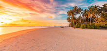 Island Palm Tree Sea Sand Beach. Panoramic Beach Landscape. Inspire Tropical Beach Seascape Horizon. Orange And Golden Sunset Sky Calmness Tranquil Relaxing Summer Mood. Vacation Travel Holiday Banner