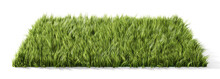Square Glade With Green Grass. 3d Illustration