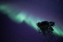 Northern Lights Dancing Playfully.