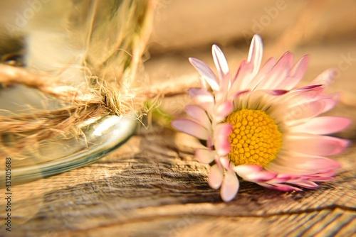 Obraz Wiosenne kompozycje - fototapety do salonu
