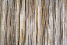 Bamboo Fence Texture As Design Background