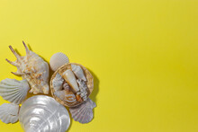 Top View Of Baskets With Seashells On A Yellow Background. Summer Concept. Free Space.Flat Lay.