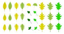 装飾素材「Green Leaf]