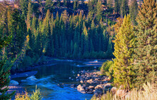 Elevated View Of River In Yellowstone National Park In The Fall