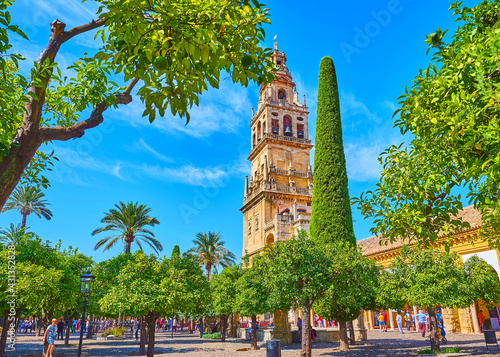 Stampa su Tela The lush orange trees of Mezquita, Cordoba, Spain