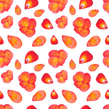 Watercolor Seamless Pattern With Hand Drawn Red And Orange Pansy Flowers And Petals On White Background.Pansies Bloom.Textile Design,clothes Pattern,bed Linen,interior Idea,bright Spring Wallpaper