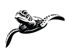Black Graphic Sea Turtle Swimming, Front View.