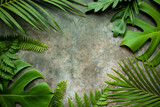 Fototapeta Kawa jest smaczna - Creative nature layout made of tropical leaves. Summer concept. Fern Palm and monstera leaf on wall textures. Nature beach background layout with free text space.