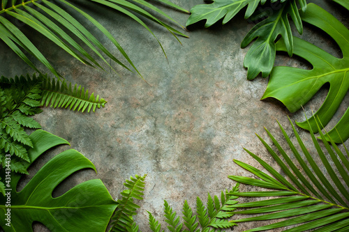 Creative nature layout made of tropical leaves. Summer concept. Fern Palm and monstera leaf on wall textures. Nature beach background layout with free text space. - fototapety na wymiar