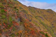 秋の谷川岳の天神尾根1600m付近から北側の西黒尾根を見る