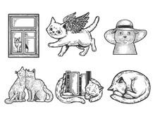 Cat Set Sketch Raster Illustration