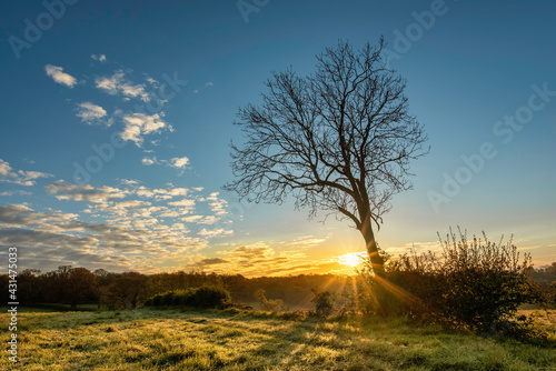 Fototapeta Morning landscape with a sunrise over a field and hills in Spring, Harrow, Great