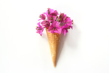 Top View Of Ice Cream Cone With Pink Bougainvillea On The White Background