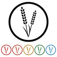 Wheat Ears Ring Icon Color Set