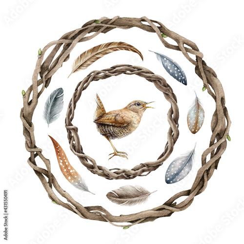 Valokuvatapetti Vine rustic wreath, wren, feathers set