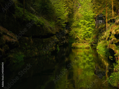 Czeska Szwajcaria rzeka Kamenice chatka - fototapety na wymiar