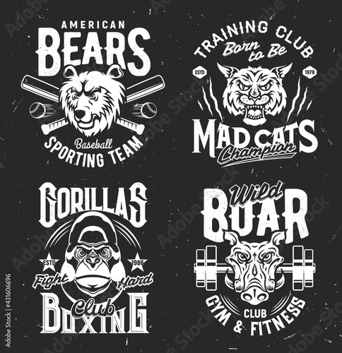 Tshirt prints with bear, boar, mad cat and gorilla vector mascots for sports team uniform apparel design. Isolated labels with wild animals and typography, t shirt prints or emblem for sport club set - fototapety na wymiar
