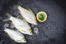 Silver Barb Fish On Ice,  Java Barb Carp Fish On Market Food With Herb And Spices Lemon On Dark Background, Fresh Fish Top View