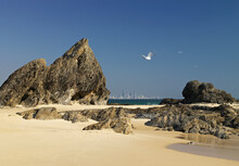 Jagged Rock Formation - Elephant Rock On Beach With Surfers Paraidise Cityscape In Distant Background