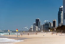 People On The Beach At Surfers Paradise And High Rise Resorts On Shoreline