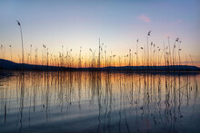 Kochel Lake An The Bavarian Alps In Germany