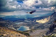Adler Im Flug Rila Gebirge 7 Seen Alaska
